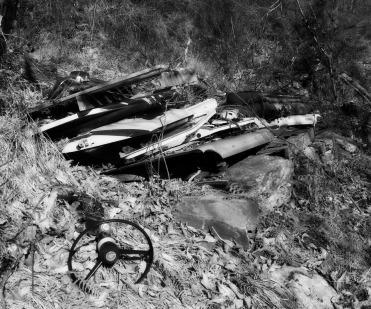 carcasse voiture bois