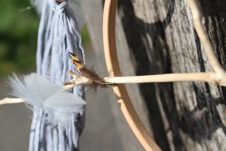 plumes et bois flotté
