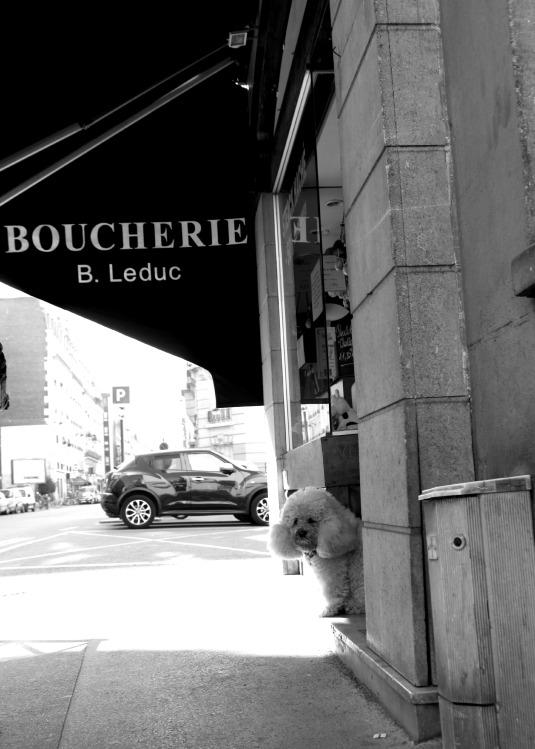 scène de vie paris