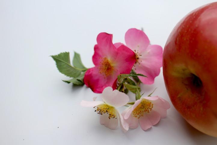 pomme et rose ancienne