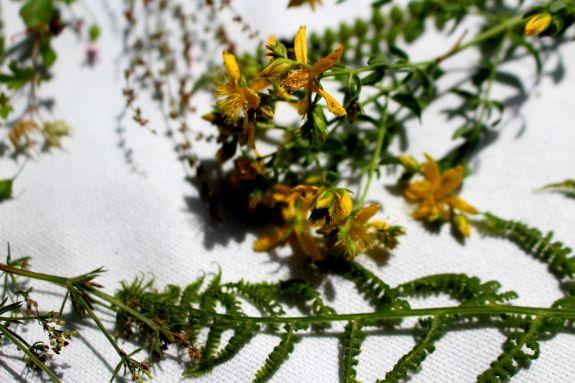 Imprimer des fleurs DIY