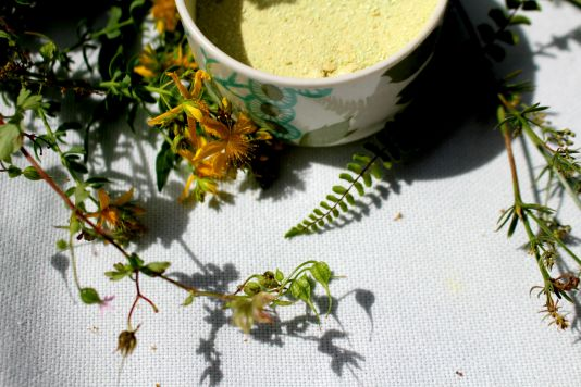 technique de teinture avec les plantes