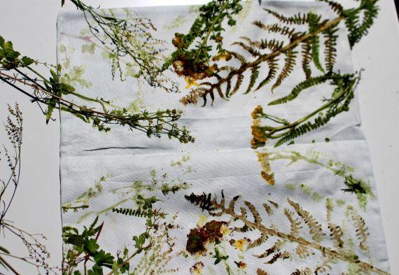 tuto impression de plantes