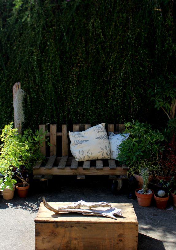 tuto teinture végétale plantes