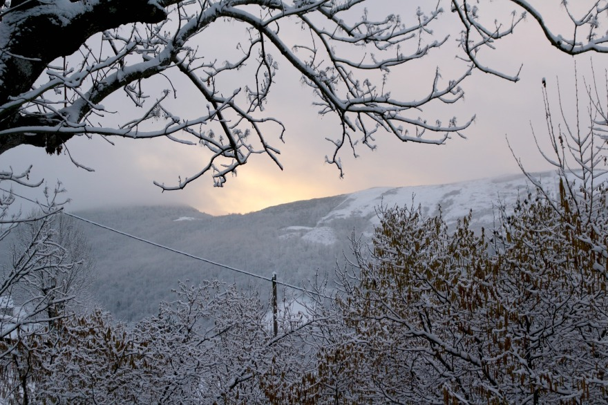 cévennes winter