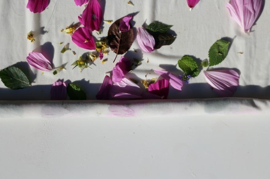 teinture-avec-des-fleurs