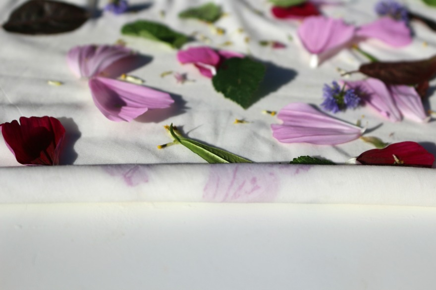 teinture-vegetale-eco-print